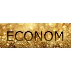 Econom-билет