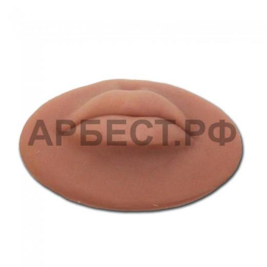 Кожа Sils губы (L)